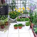 原本花園2