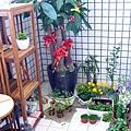 原本花園1