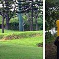 (10M)綠風草原-散步去