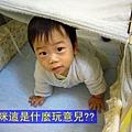 (10M)寶寶鑽帳篷玩
