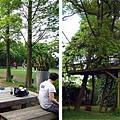 (10M)綠風草原-園區-3