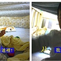 (10M)寶寶與他的秘密基地