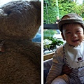 (10M)綠風草原-寶寶與棕熊熊-2