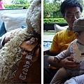 (10M)綠風草原-寶寶與棕熊熊-1