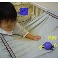 (10M)寶寶新玩具-蟲蟲飄移飄移玩法-4