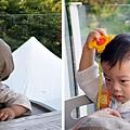 (11M)綠風台北-可愛寶寶