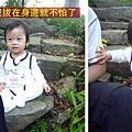 (11M)6號花園-寶寶in石頭3