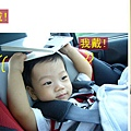 (11M)寶寶以為只要戴在頭上都是戴帽子