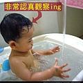 (12M)剪輯-浴缸玩水3-非常認真觀察