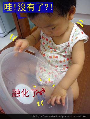 (13M)玩到冰塊溶化了,還不甘心一直摸摸摸
