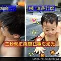 (14M)宜蘭晶英-寶寶玩水篇-在把拔安慰下重拾精神