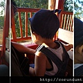 (15M)六福村遊-認真在遊園車上看動物