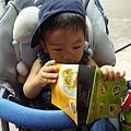 (15M)六福村遊-讓我看看遊園地圖