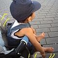 (15M)六福村遊-再度累了1