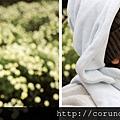 (17M)銅鑼杭菊-寶寶看到花好開心