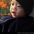 (17M)通霄花海-寶寶