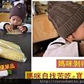 (17M)銅鑼杭菊-吃玉米1