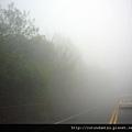 (17M)路上起霧了