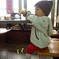(17M)銅鑼杭菊-有好吃餅乖乖坐