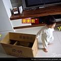 (19M)箱子還是寶寶的最愛2