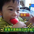 (19M)寶寶與刷牙大象-2