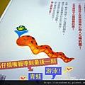 (22M)小蛇散步10-完