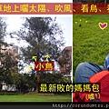 (22M)和寶寶在公園
