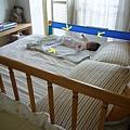 (妹妹3M)認份在床上放風的妹妹