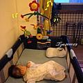 (妹妹3M)遊戲床上還是看音樂鈴