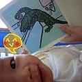 (4M)妹妹愛書-鱷魚先生03