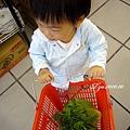 (2Y4M)散步-陪媽咪上超市買菜
