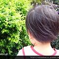 (2Y4M)散步-跟媽媽一起看蝴蝶採花蜜