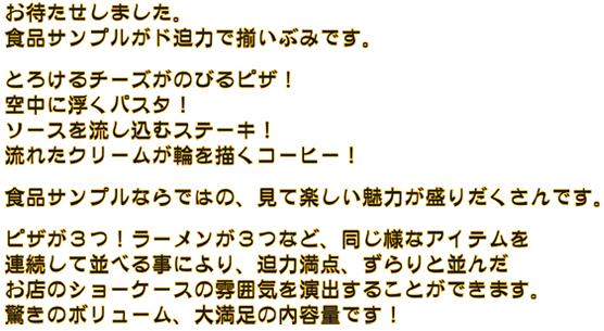 02-04-04-00b.jpg