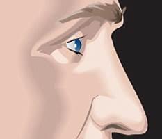 台中隆鼻類型|台中隆鼻權威|台中菲仕美