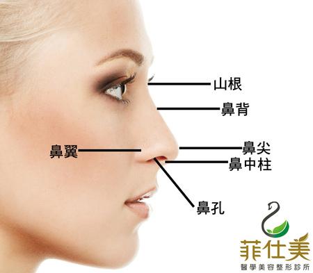 台中隆鼻手術|隆鼻手術權威|菲仕美