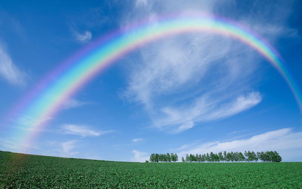 0-0-2 rainbow.jpg