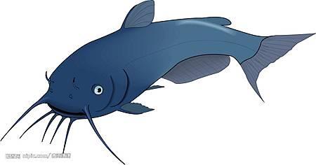 0211-鯰魚.jpg