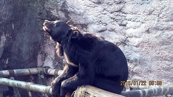 1040122049動物園.JPG