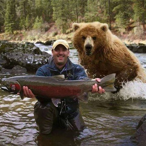 人與熊.jpg