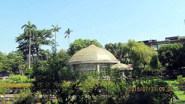 1040731009植物園.JPG