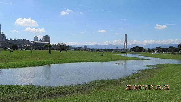 1050712039台北都會公園 (5)