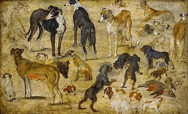 Jan Brueghel The Elder- Studies of Dogs