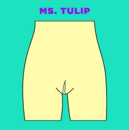 Ms. Tulip大陰唇開合度比較大,露出小陰唇552a4b23e7ac3e4cb97