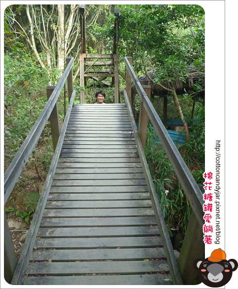 桃米同心橋05.jpg