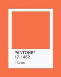 橘.jpg