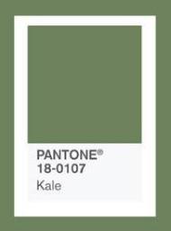 綠.jpg