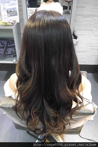 【台北.內湖.東湖捷運站】Tokyo Hair Salon東京髮藝-為頭髮染上亮麗的色彩