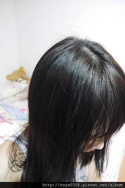1435672536-4038770177_n.jpg?v=1435672549