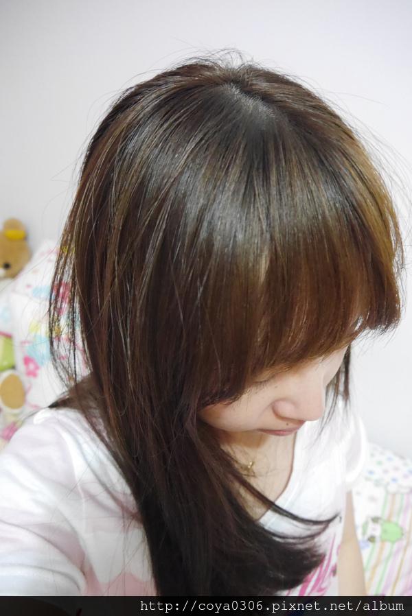 P1370465.jpg