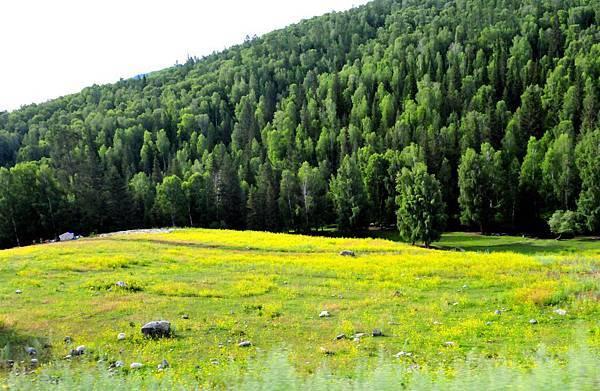 南北疆風景 159